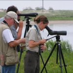 Spotting Scope Buying Guide