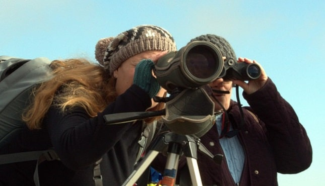 What Is A Spotting Scope Used For